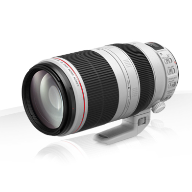 Canon EF 100-400mm f/4.5-5.6L IS II USM (© Canon)